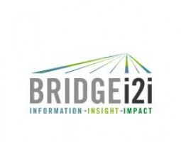 BRIDGEi2i Analytics Solutions Private Limited